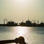 mar-158-Fishboats1
