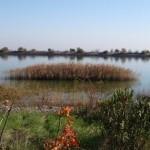 N. Plastira Reservoir, Credit: Elias Dimitriou
