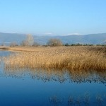 Trichonis Lake