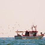mar-117-Fishboats14
