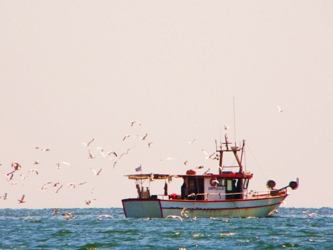 mar-117-Fishboats14