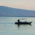 Fishboats19