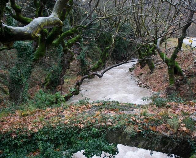 Evrotas River (Oinous stream). Credit: Nikos Skoulikidis