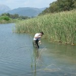 Inl-sampl-27-macroinvertebrate sampling Mornos DW
