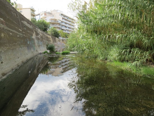 Pikrodafni Stream, Credit: Elias Dimitriou