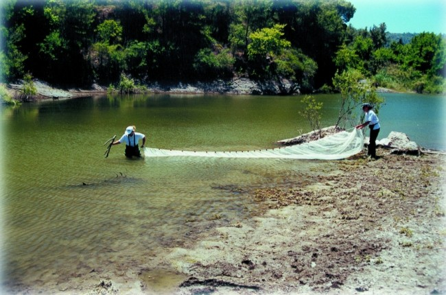 Inl-sampl-24-fish sampling