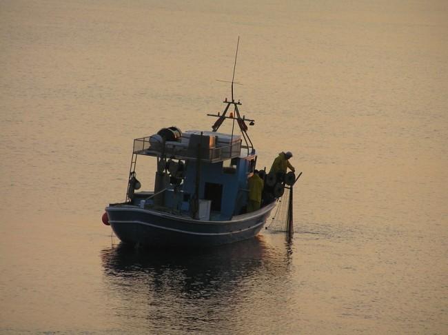 Fishboats8, Credit: Nota Peristeraki