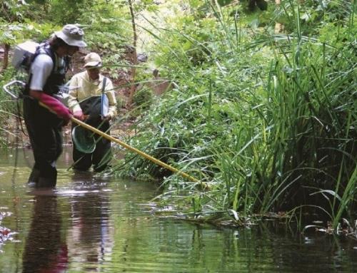 Inland Water Fish Monitoring Operations Manual