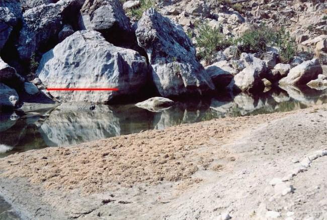 Inl-sampl-64-gadour