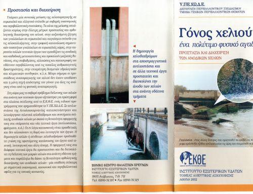 European Eel Elvers: Conservation of a natural treasure