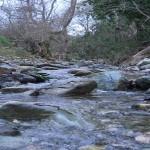 Evrotas River, Credit: Nikos Skoulikidis