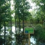 Trichonis Lake, Gredit: I. Zacharias