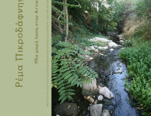 Book: Pikrodafni Stream
