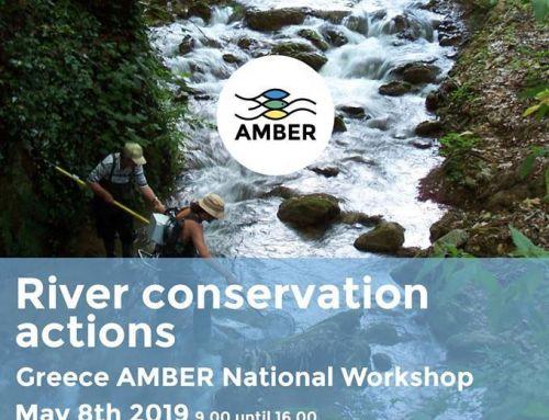 """Workshop: """"River conservation actions"""", AMBER Project/ (ΗΜΕΡΙΔΑ: """"Δράσεις Διατήρησης στους Ποταμούς"""")"""