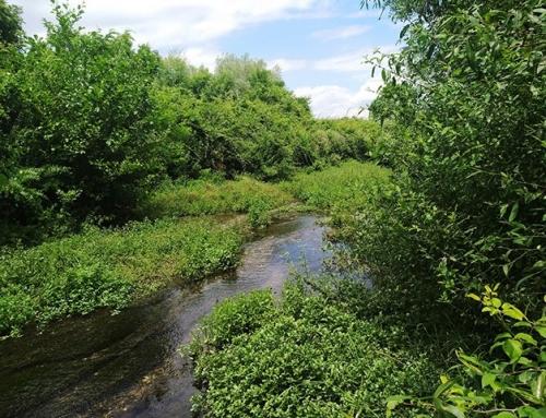 OHRID LAKE WATERSHED